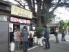 ⑧谷根千Bセンスさんぽ/ヒマラヤスギの大木がランドマークとなっている古いパン屋・みかど屋